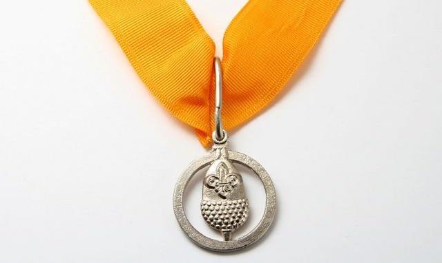The Silver Acorn