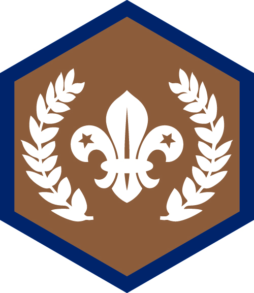 Bronze Chief Scout's Award