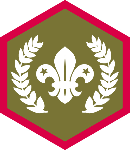 Gold Chief Scout's Award
