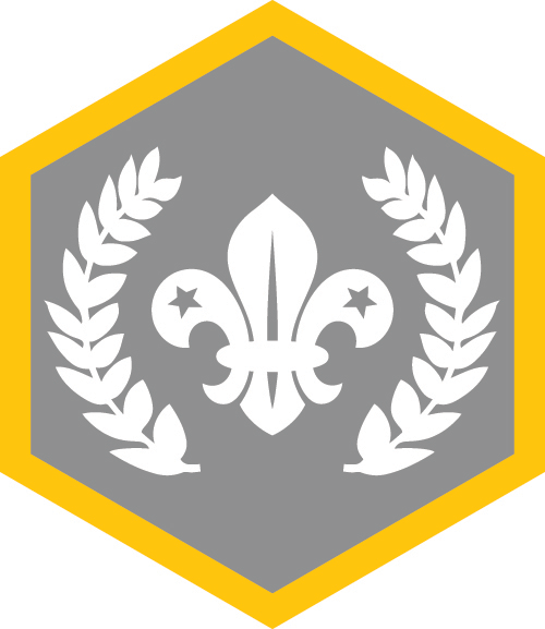 Silver Chief Scout's Award